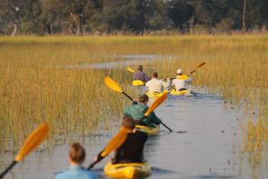 Peak Teams kayaking the okavango river delta